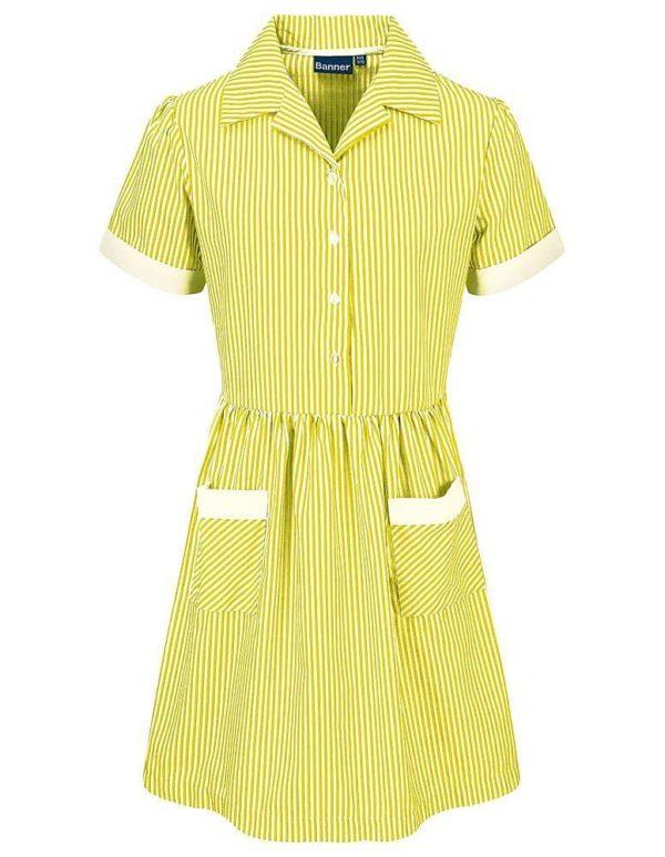 Webshop Striped Dress Belt Royal