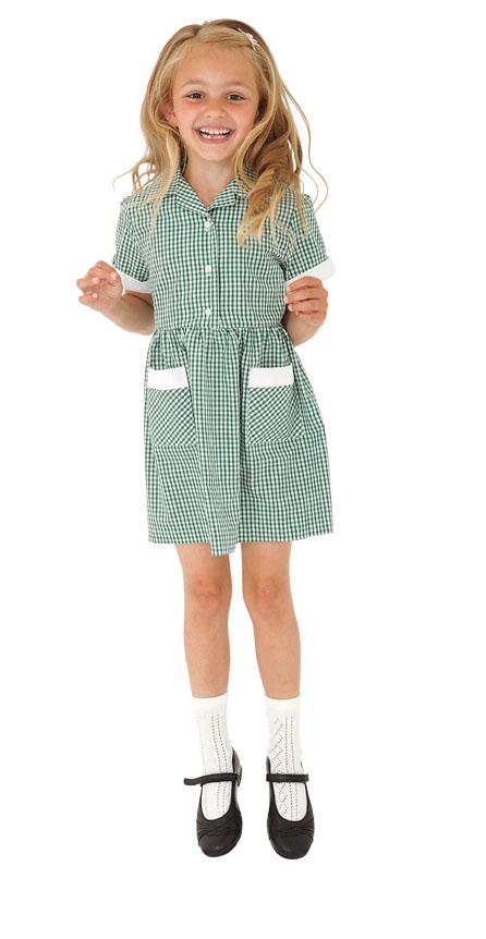 Webshop Gingham Dress - Belt Green